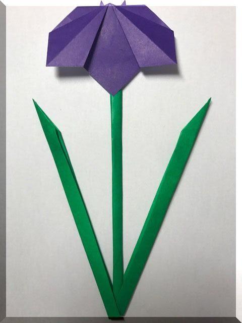 端午の節句の菖蒲の折り紙