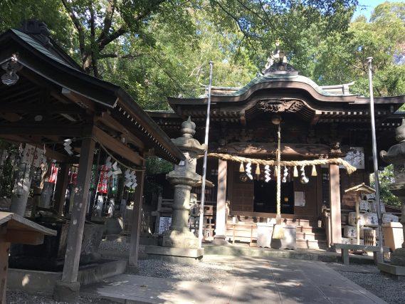 座間神社 (10)