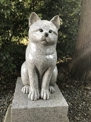 座間神社 (19)